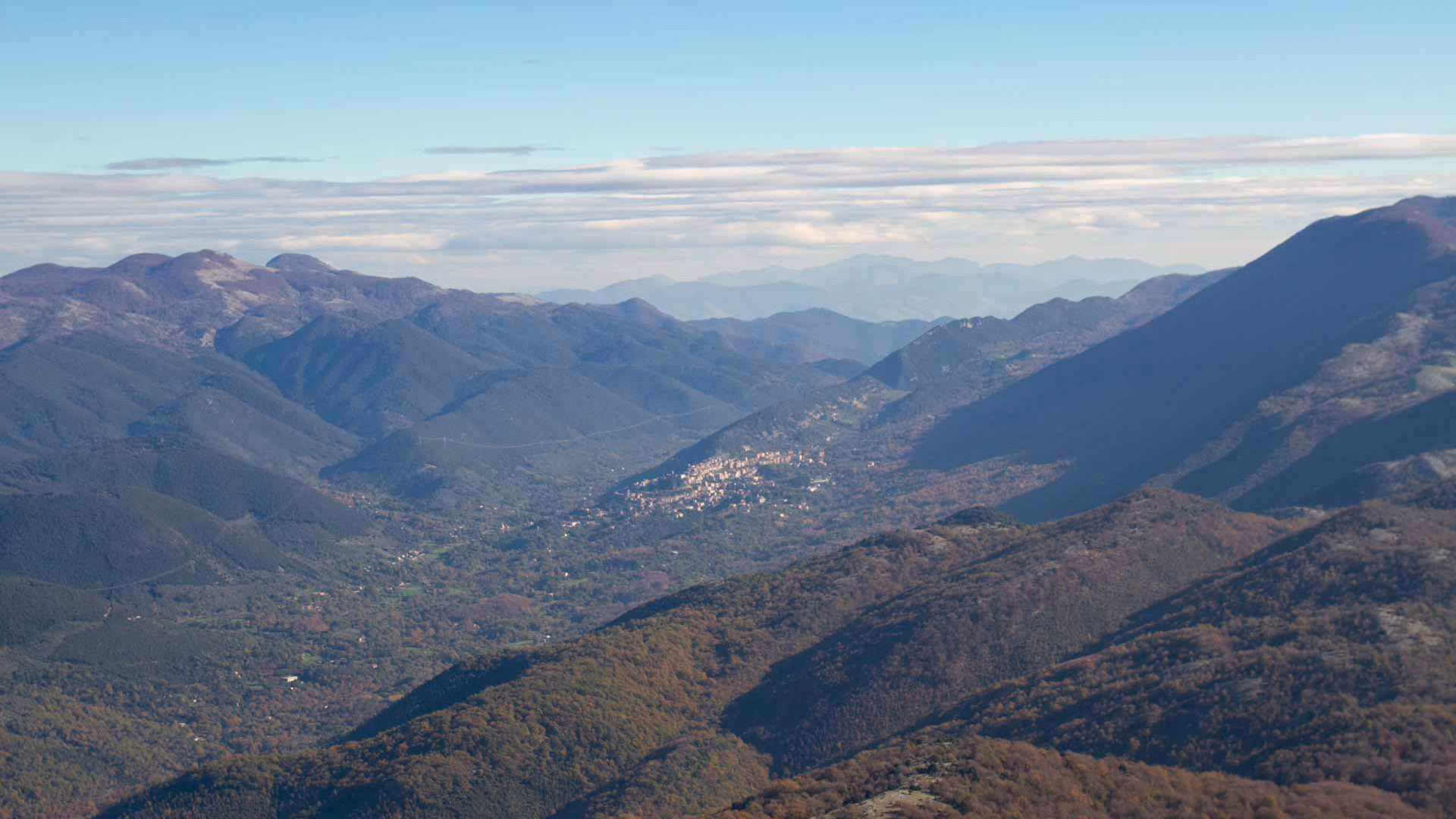 Monte Lupone